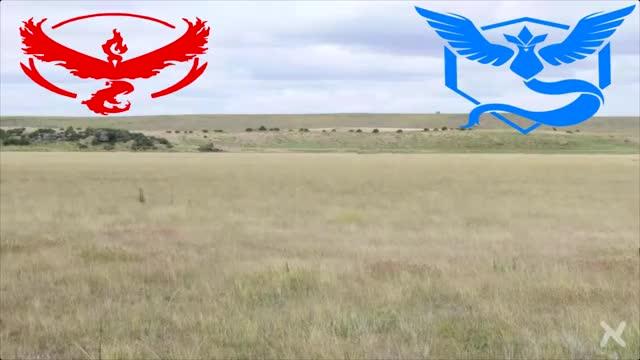 Watch and share Pokemongo GIFs and Teamwars GIFs by mixedmedia_eli on Gfycat