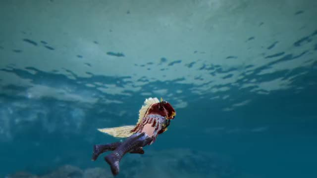Watch and share Fish GIFs by akuhatsu on Gfycat