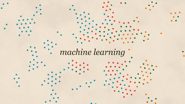 Watch Machine Learning and Human Bias GIF on Gfycat. Discover more related GIFs on Gfycat