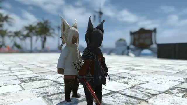 Watch and share Plato On Twitter- -#おはララ #FF14 #FFXIV… - GIFs on Gfycat
