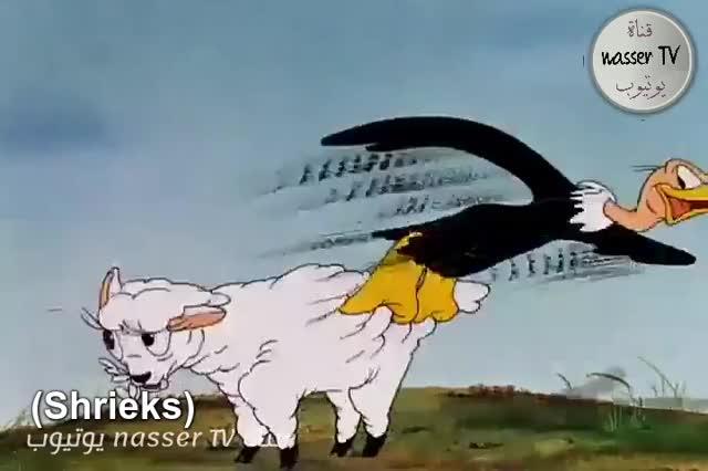Watch Sheep off the Wool 🐑 GIF by @fannie123 on Gfycat. Discover more Cartoon, buzzard, hair, sheep, slip, slip dress, woman hair, wool, woolless GIFs on Gfycat