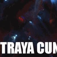 F'in Straya GIFs