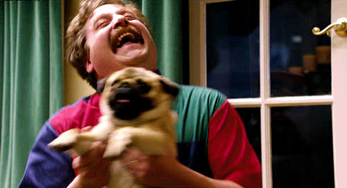 celebrate, dog, excited, exciting, funny, galifianakis, happy, hilarious, laugh, lol, loud, out, pet, pug, puppy, woohoo, yay, yeah, zach, Zach Galifianakis - Celebrate GIFs