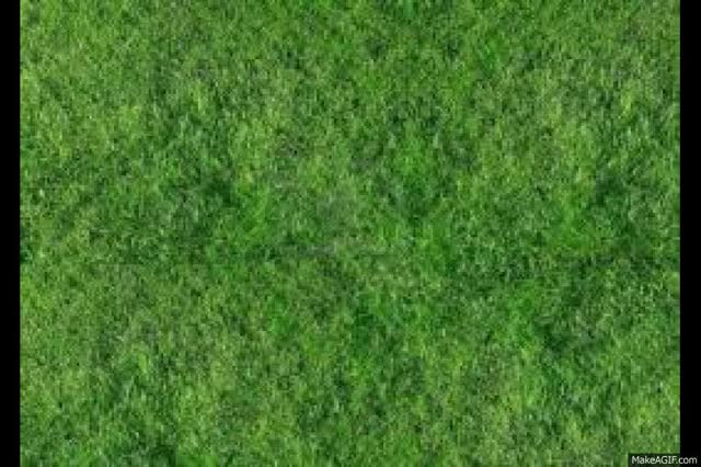 Watch and share Grass GIFs on Gfycat