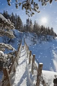 Watch and share Snowfall Bridge GIFs on Gfycat