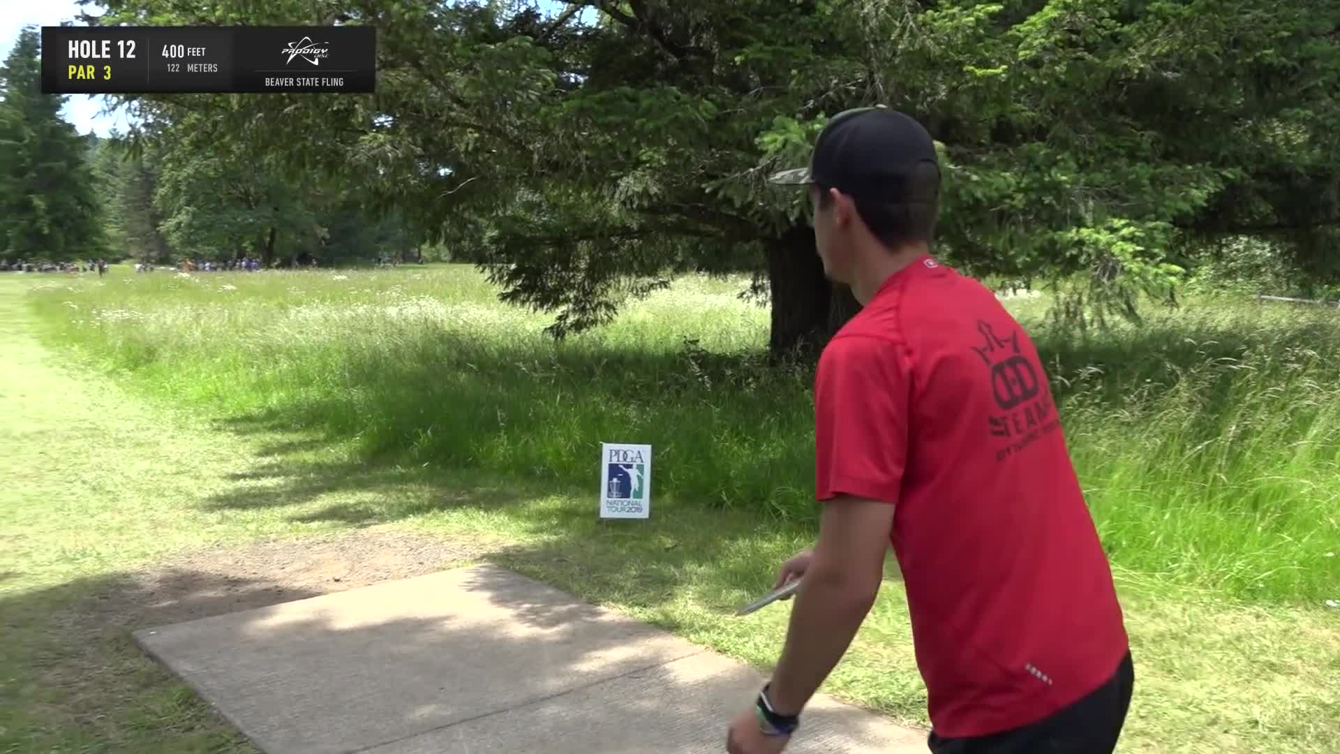 ace, bsf, dela, delaveaga, dgpt, dgwt, disc, disc golf, frolf, hole in one, masters cup, mcbeast, milo, nate sexton, nt, paul mcbeth, pdga, simon lizotte, tournament, worlds, 2019 Beaver State Fling - Final Round, Part 2 - AJ Risley hole 12 drive in tree GIFs