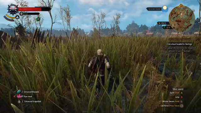 Watch and share Witcher 3 GIFs by Zackarotto on Gfycat