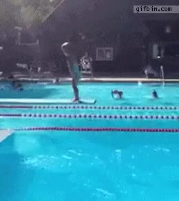 Watch olympics GIF on Gfycat. Discover more related GIFs on Gfycat