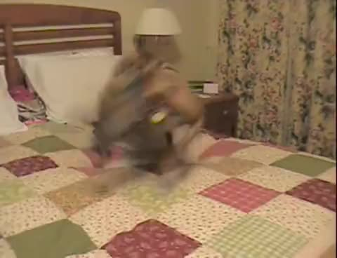 What greyhounds do in bed GIFs