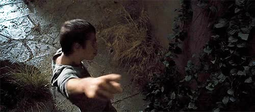 Watch maze GIF on Gfycat. Discover more related GIFs on Gfycat