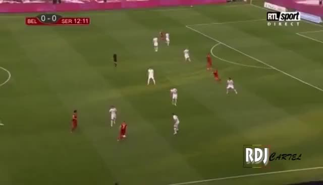 Watch and share Belgium GIFs on Gfycat