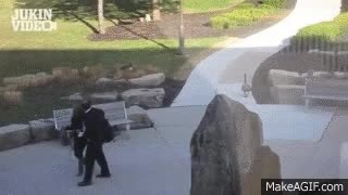 Watch and share Goose Attacks Businessman GIFs on Gfycat