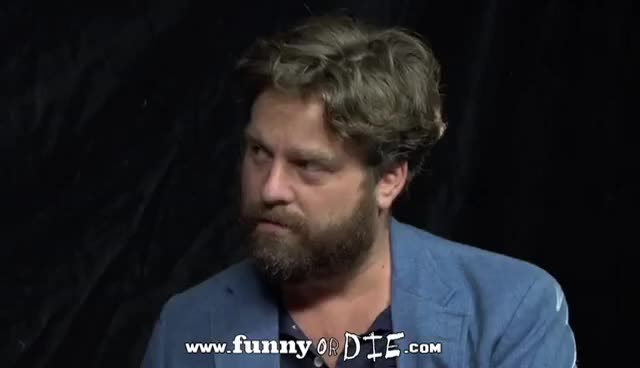 Watch this trending GIF on Gfycat. Discover more Zach Galifianakis GIFs on Gfycat