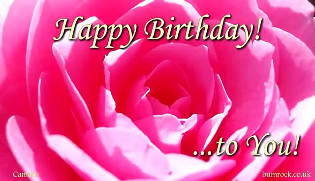 Happy Birthday To You Pramila Beautiful Flowers Pictures With Best Birthday So Gfycat,Kitchen Helper Stool Ikea Hack