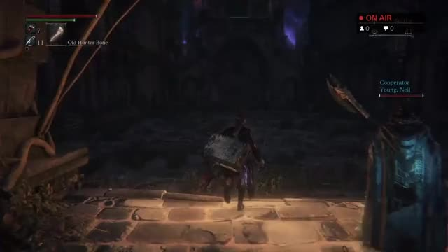 Watch and share Bloodborne GIFs and Cainhurst GIFs on Gfycat