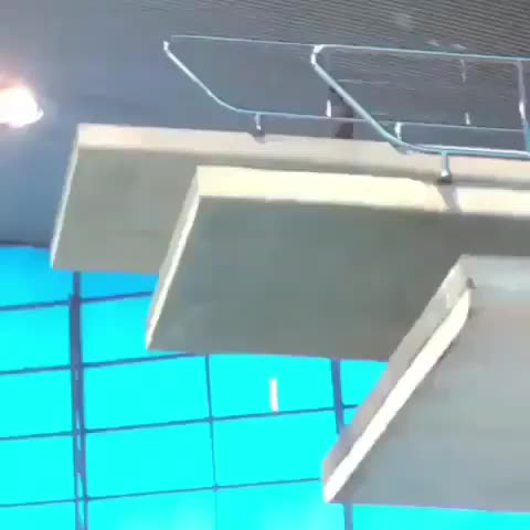 Watch and share Perfect Dive GIFs by tothetenthpower on Gfycat