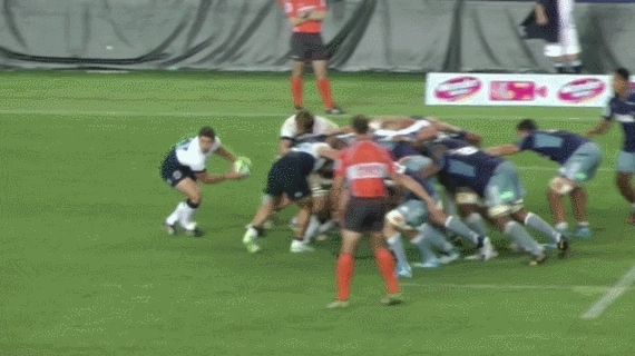 HighlightGIFS, gifsthatkeepongiving, sports, If the World Rugby try of the year wasn't just for internationals... (reddit) GIFs