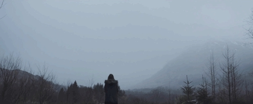 alone, black and grey, black and white, fly, follow, forest, gif, girl, grey, grunge, mountains, ocean, sea, sky, snow, tumblr, whale, white, white and grey, world, wow, amsterdam. GIFs