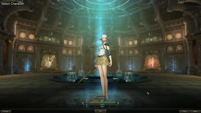 Watch and share Lineage2 GIFs and Memories GIFs by psycholino on Gfycat