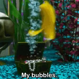 Watch Bubbles GIF on Gfycat. Discover more related GIFs on Gfycat