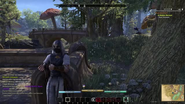 Watch and share Wood Elf GIFs and Bosmer GIFs by js.robin66 on Gfycat