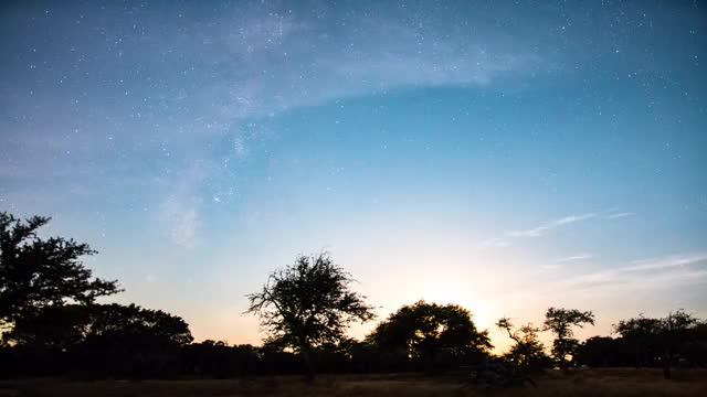 Watch Perseid Meteor Shower GIF by @mrbrownie123 on Gfycat. Discover more dripping springs, meteor shower, milkyway GIFs on Gfycat