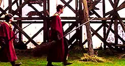 Watch gifset gift for serpenssortia GIF on Gfycat. Discover more 1k, Harry Potter, gifset gift, hp1, hpedit, mine, mygif, oliver wood, philosopher's stone GIFs on Gfycat