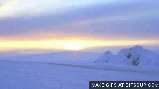 Watch and share Tundra GIFs on Gfycat