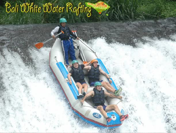 Watch Bali White Water Rafting GIF on Gfycat. Discover more related GIFs on Gfycat