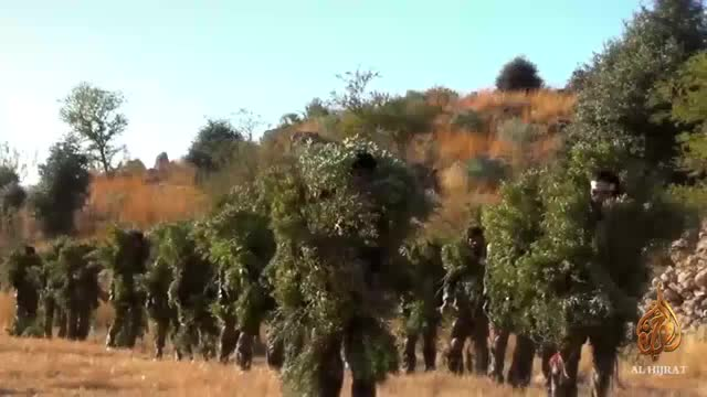 Watch and share Taliban DIY Ghillie Suit (reddit) GIFs on Gfycat