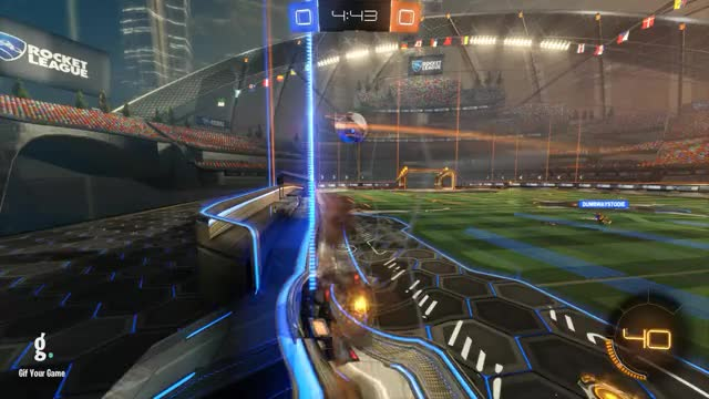 Goal 1: Senix Lumi-