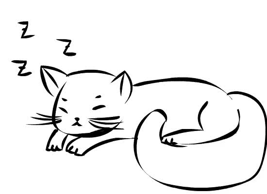 Watch and share Sleepping GIFs on Gfycat