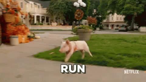 Run GIFs