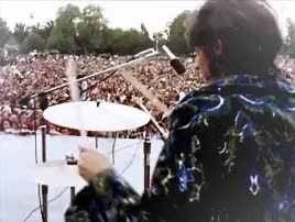 """Watch The Doors perform at the """"Northern California Folk-Rock Fest GIF on Gfycat. Discover more 1960s, 1968, 60s, gif, jim morrison, john densmore, mygif, ray manzarek, requested, robby krieger, san jose, the doors GIFs on Gfycat"""