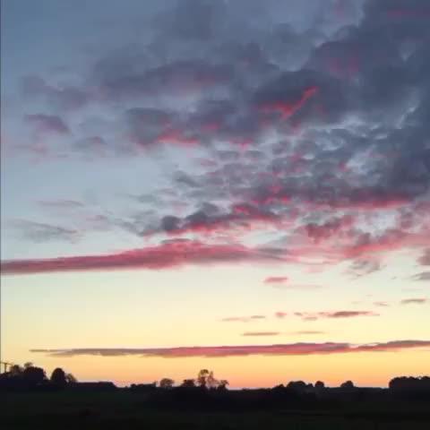 Watch and share Shepherd's Delight GIFs by Daniel Baker on Gfycat