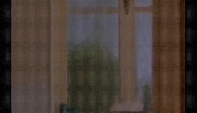 Watch and share Incognito - Full Movie GIFs on Gfycat
