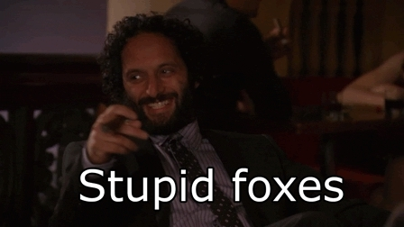 jason mantzoukas, Stupid Foxes GIFs