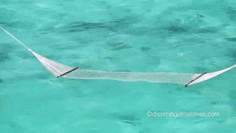 Watch and share 🇲🇻 — Maldives GIFs on Gfycat