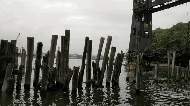Watch north-brother-island-beach GIF by Dave Mosher (@davemosher) on Gfycat. Discover more abandoned, beach, dock, new york city, north brother island, spooky GIFs on Gfycat