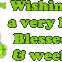Watch blessed day GIF on Gfycat. Discover more related GIFs on Gfycat