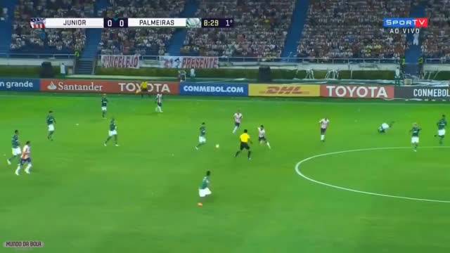 Watch and share Palmeiras GIFs and Agress GIFs on Gfycat