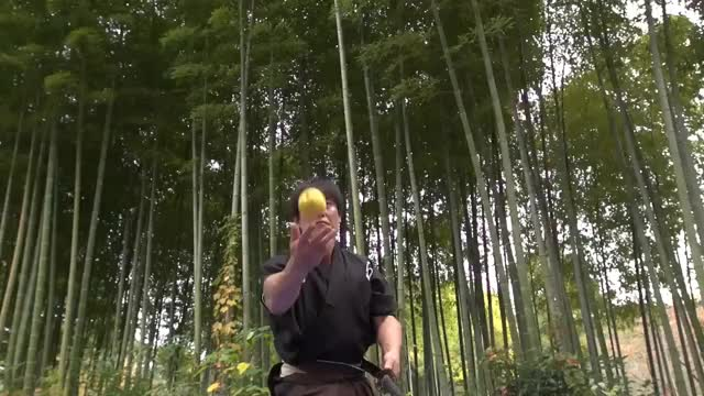 Watch Martial arts master attempts katana world record - Japan Tour GIF on Gfycat. Discover more 2017, Japan, Sword, guinness, gwR, karate, katana, record, samurai, swords, taekwondo GIFs on Gfycat