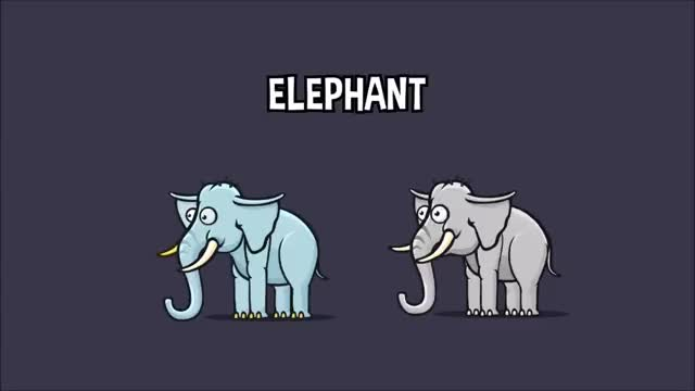 Watch 2D animated elephant game asset GIF on Gfycat. Discover more related GIFs on Gfycat