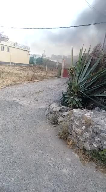 Watch and share WhatsApp Video 2019-03-25 At 11.54.33 GIFs on Gfycat