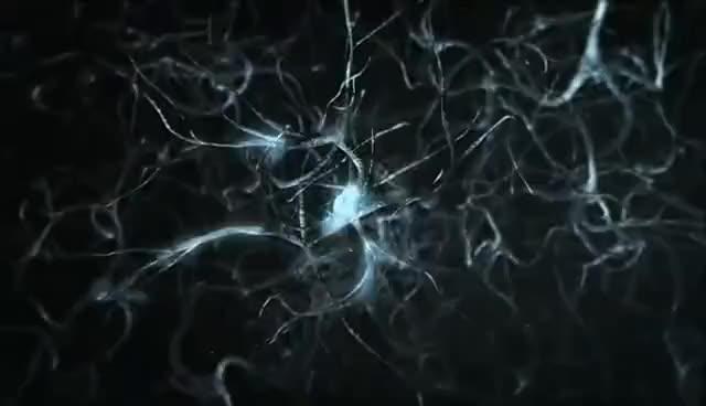 Watch and share Neuronios GIFs on Gfycat