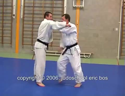 Watch ponsoinage GIF on Gfycat. Discover more judo GIFs on Gfycat