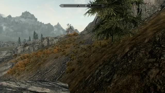 Watch But... why? GIF by Roadie (@roadie) on Gfycat. Discover more askreddit, skyrim GIFs on Gfycat