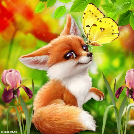 Watch this butterfly GIF by MEGAPORT.hu (@megaportgifs) on Gfycat. Discover more butterfly, cute fox, fox GIFs on Gfycat