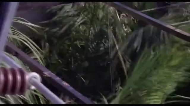 Watch Jurassic Park 1993 - Raptor Feeding Scene HD GIF on Gfycat. Discover more Dinosaur, EXCLUSIVE, Industry, Park, Speilberg, bluray, dern, film, hd, high, jeff, jp, movie, movieclips, quality, steven, trailer, urassic, world, yt GIFs on Gfycat