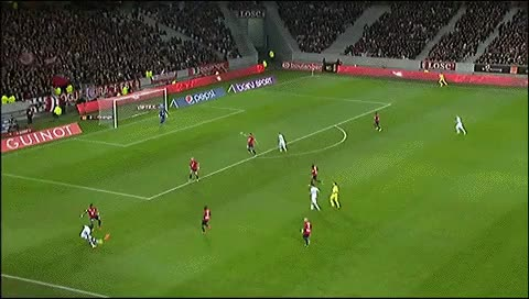 Watch and share Ludovic Genest. Lille - Bastia. 15.12.2013 GIFs by fatalali on Gfycat